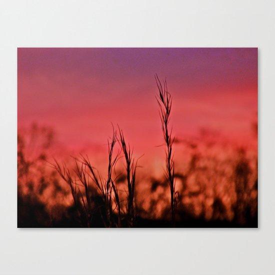 Losing Light Canvas Print
