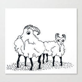 Goats Canvas Print