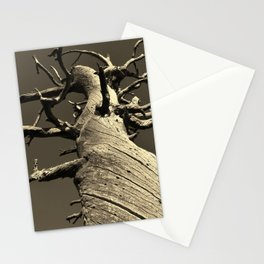 methuselah Stationery Cards
