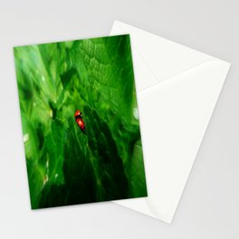 LOVE BUGS  Stationery Cards