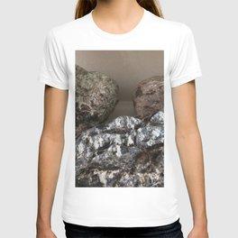 Lompoc California agates T-shirt