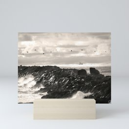 South Jetty, Oregon coast , pelicans Mini Art Print