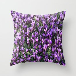 SPANISH LAVENDER AND ONE BEE Throw Pillow