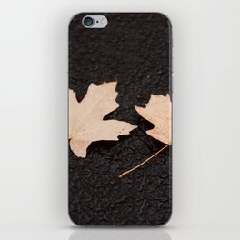 Maple Leaves Photography Print iPhone Skin