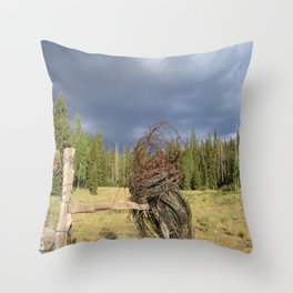 Barbed Wire Up in the White Mountains Arizona Throw Pillow