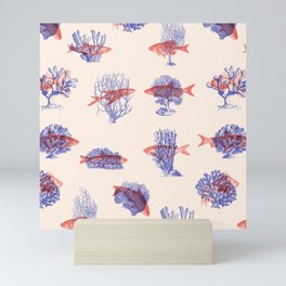 Where they Belong - Fish Mini Art Print