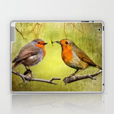 Robin Presents Laptop & iPad Skin