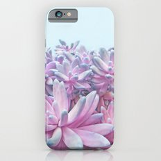 Sweet Succulents iPhone 6s Slim Case