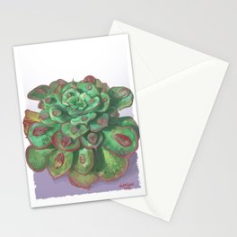 Raindrop - Succulent Stationery Cards