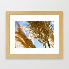 Biarritz Beach Grass Framed Art Print