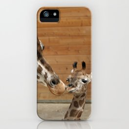 Giraffe 002 iPhone Case