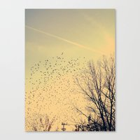fly Canvas Prints featuring Fly by Olivia Joy StClaire