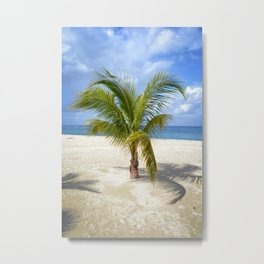 Palm - Cozumel Metal Print