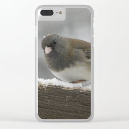 Snowy Junco Clear iPhone Case