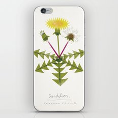 Dandelion Modern Botanical iPhone & iPod Skin