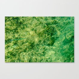 Slim Canvas Print