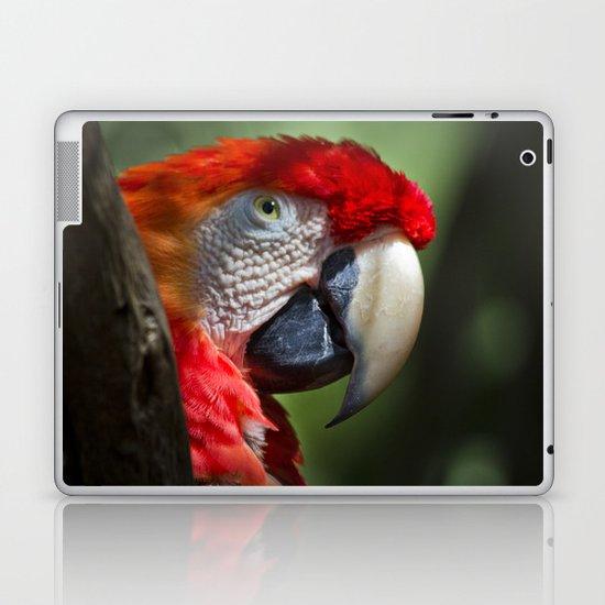 Scarlet Macaw Laptop & iPad Skin