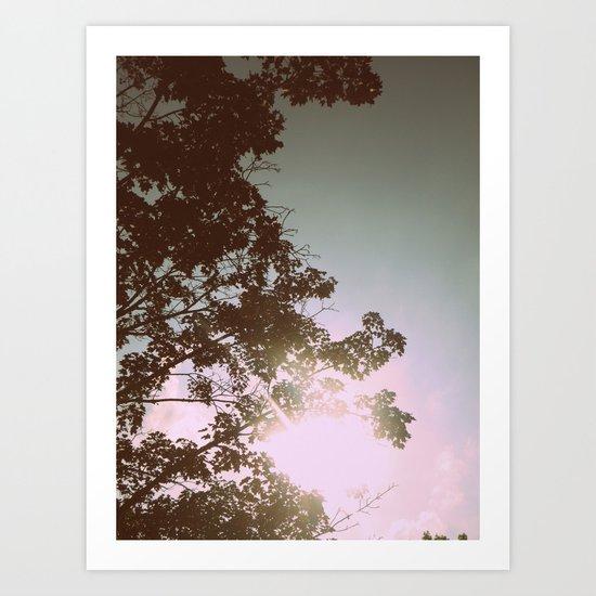 Sun Burned Leaves Art Print