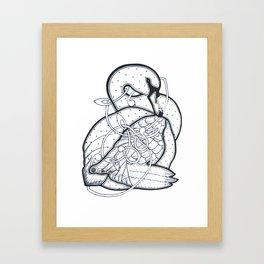 Carrick Swan Framed Art Print