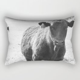 #113 Rectangular Pillow