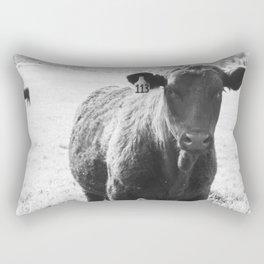 #113 Rectangular Pillow