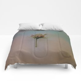 Once Upon a Time a Dancer Rose Comforters