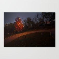 Night Tree Canvas Print