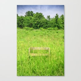 Cheerful Canvas Print