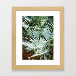 """Travel photography """"Morocco green""""   Botanical design with soft green palm leaves Framed Art Print"""