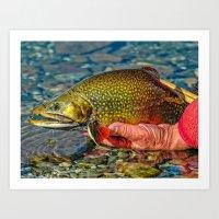 trout Art Prints featuring Trout by Edward M. Fielding