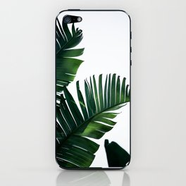 Palm Leaves 16 iPhone Skin
