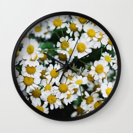 Camomile Wild Flowers Wall Clock