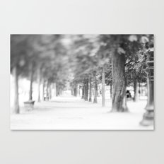 it was like walking into a dream ... Canvas Print
