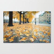 Street litter in gold Canvas Print