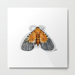 Vintage Butterfly Snouted Tiger Peridrome moth Metal Print