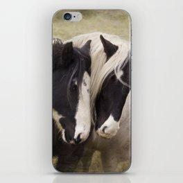 Gypsy cobs iPhone Skin