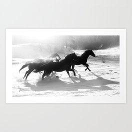 snow and shadows Art Print