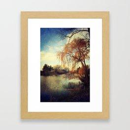 Pond 2 Framed Art Print