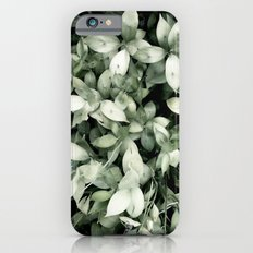 Plant Slim Case iPhone 6s