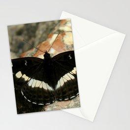 Butterfly on a Rock Stationery Cards