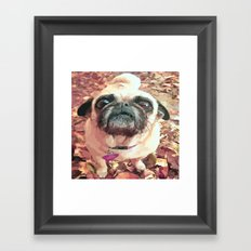 Pug Love ~ In Delilah's Eyes Framed Art Print