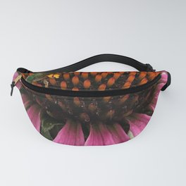 Collecting Pollon Fanny Pack