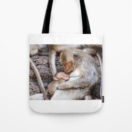 Monkeys of Thailand Tote Bag