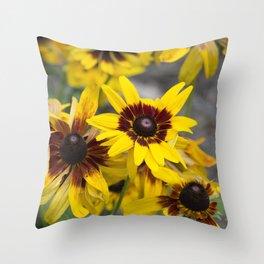 Brown Eyed Susans Throw Pillow