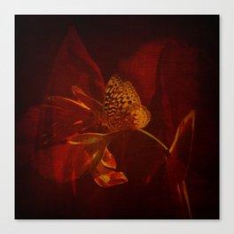 Canna Reds Canvas Print