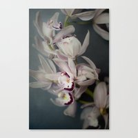 orchid Canvas Prints featuring Orchid by Pure Nature Photos