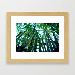 Stalks to the Sky Framed Art Print