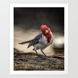 Who is Checking Out Who Art Print