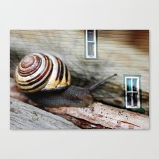 Snail :: Room with a View Canvas Print