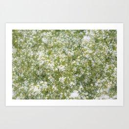 Tiny White Flora Art Print